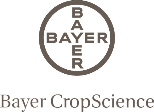 BAYER-gray