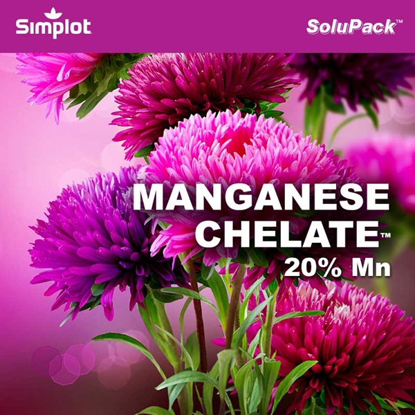 SP Manganese Chelate™ | Products | Home